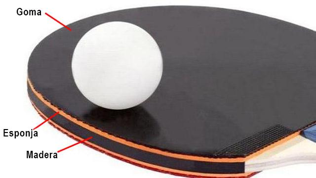 partes pala ping pong